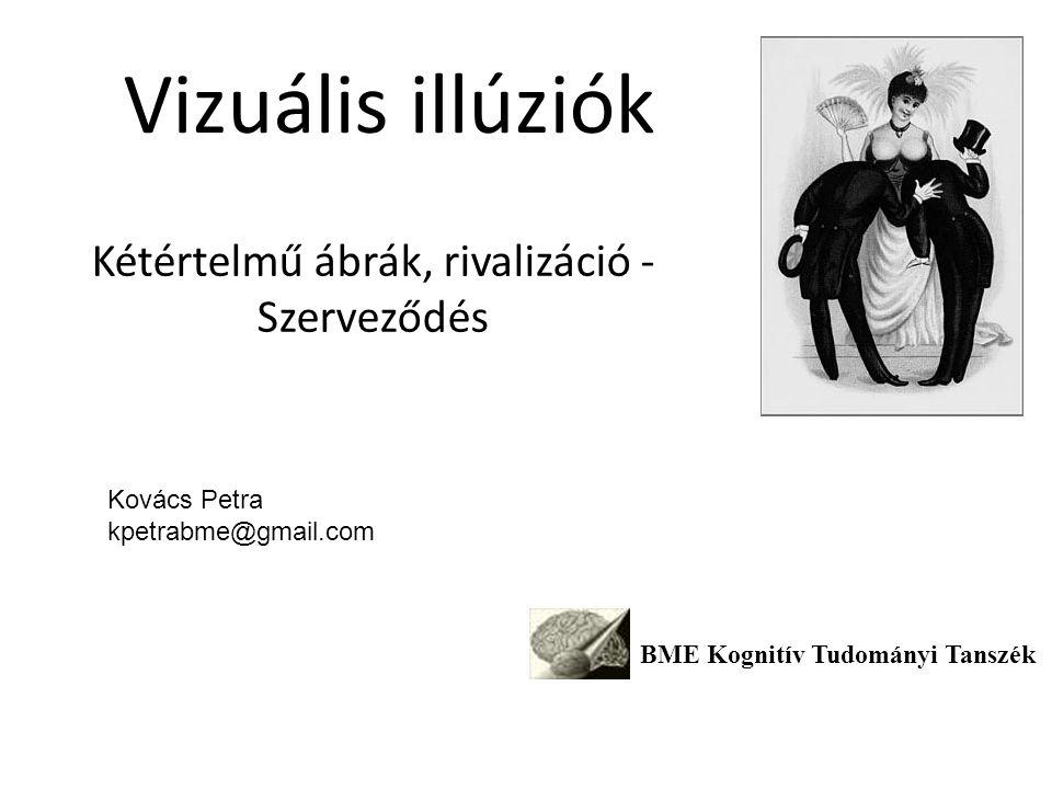 Vizuális illúziók Kétértelmű ábrák, rivalizáció - Szerveződés BME Kognitív Tudományi Tanszék Kovács Petra kpetrabme@gmail.com