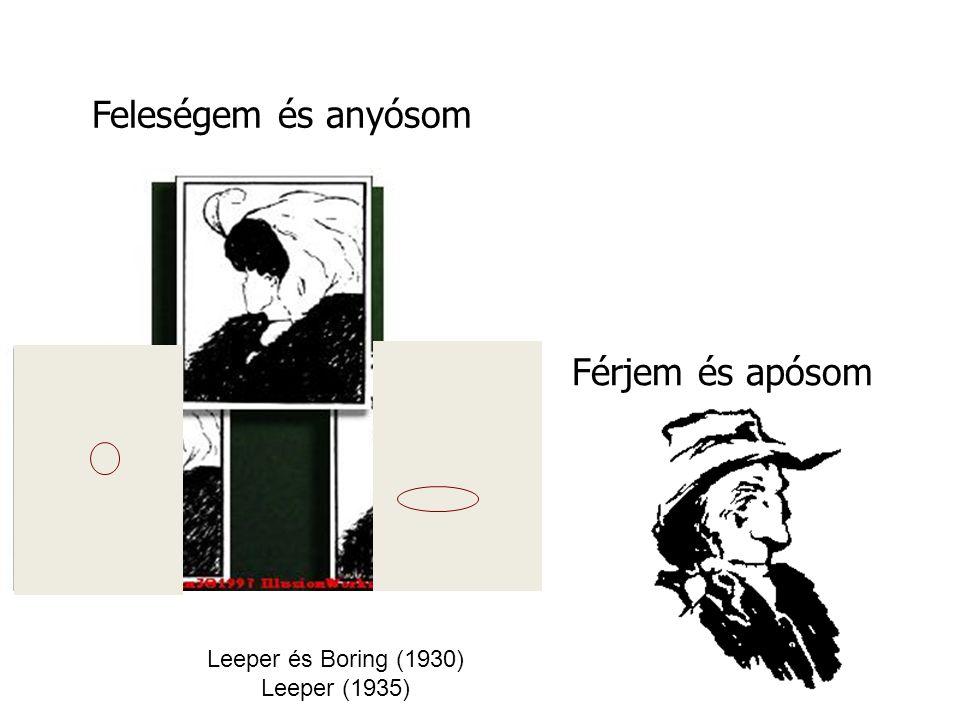Leeper és Boring (1930) Leeper (1935) Feleségem és anyósom Férjem és apósom