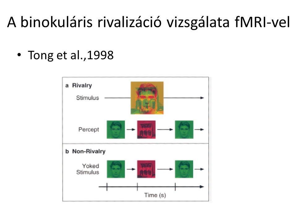 A binokuláris rivalizáció vizsgálata fMRI-vel Tong et al.,1998