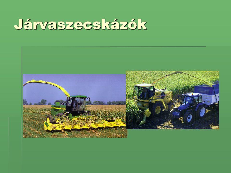 Betárolás: falközi siló Állandó jellegű silók: Legelterjedtebb nagyüzemi módszer Magyarországon.