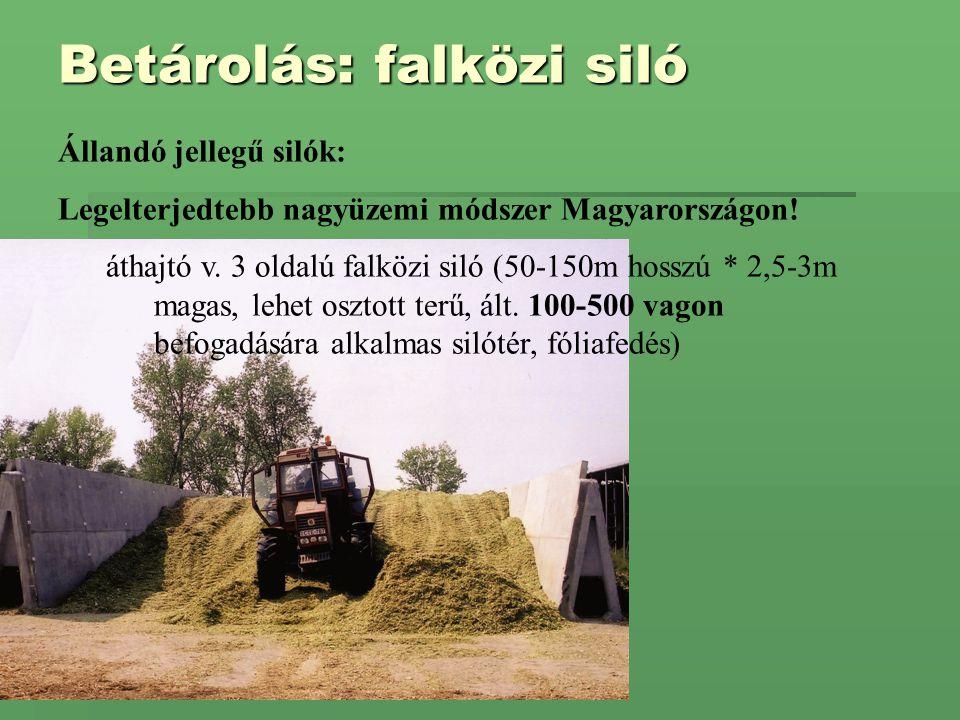 Betárolás: falközi siló Állandó jellegű silók: Legelterjedtebb nagyüzemi módszer Magyarországon! áthajtó v. 3 oldalú falközi siló (50-150m hosszú * 2,