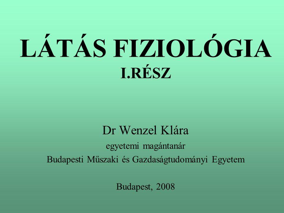 LÁTÁS FIZIOLÓGIA I.RÉSZ Dr Wenzel Klára egyetemi magántanár Budapesti Műszaki és Gazdaságtudományi Egyetem Budapest, 2008