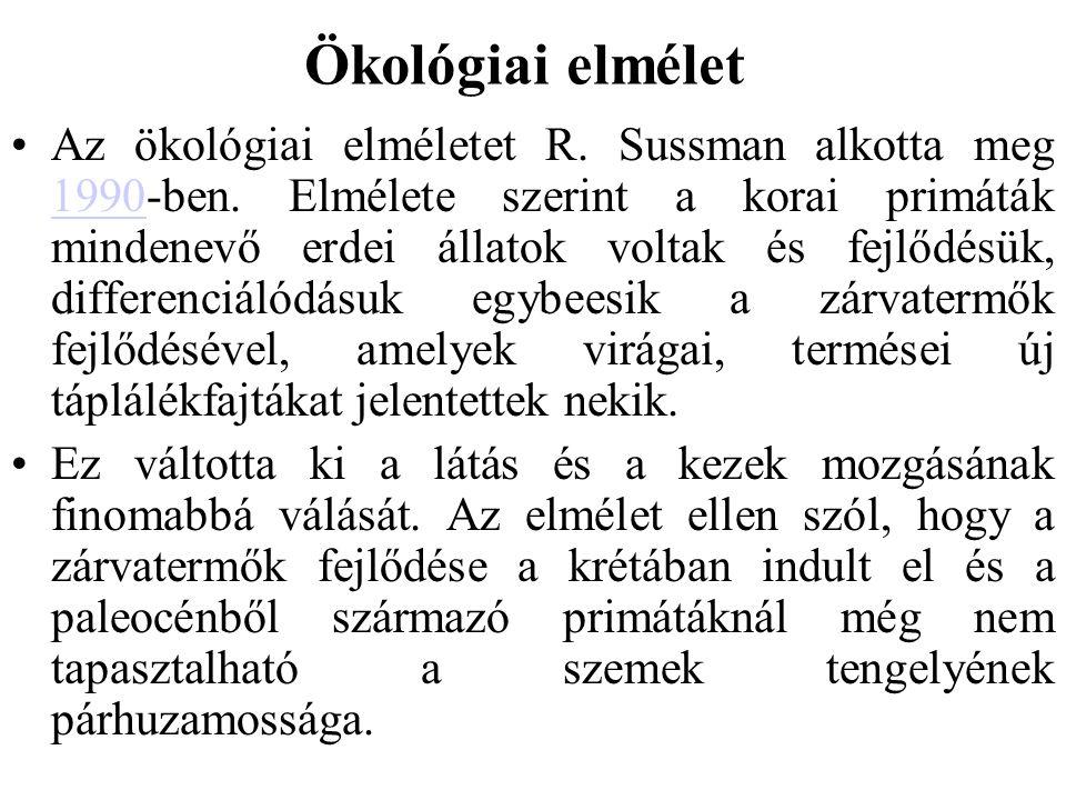 Ökológiai elmélet Az ökológiai elméletet R.Sussman alkotta meg 1990-ben.