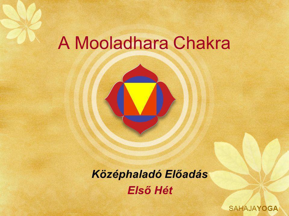 SAHAJAYOGA Mooladhara Jótéteményei Harmóniában tart a természettel és távol tart a nem természetes életmódtól Képességet és engedélyt ad a saját és más keresők Kundalinijének a felemelésére