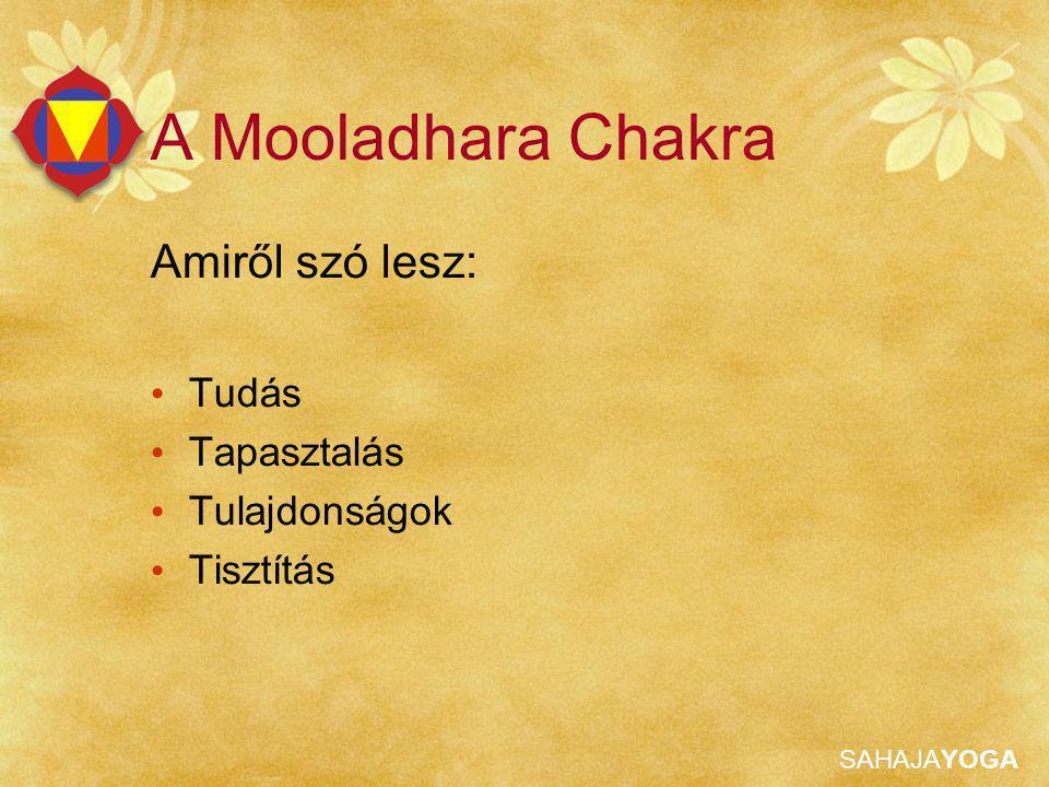 SAHAJAYOGA Mooladhara Tudás Sok betegséget a Mooladhara Chakra szabálytalan működése okoz.