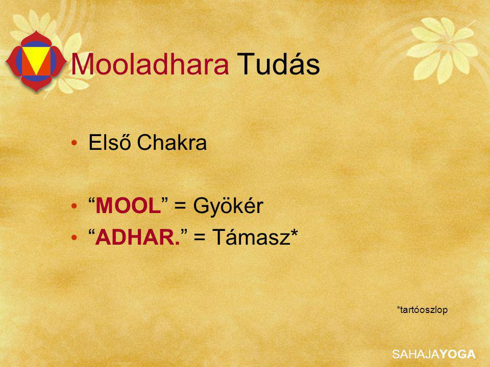 """SAHAJAYOGA Első Chakra """"MOOL"""" = Gyökér """"ADHAR."""" = Támasz* *tartóoszlop Mooladhara Tudás"""