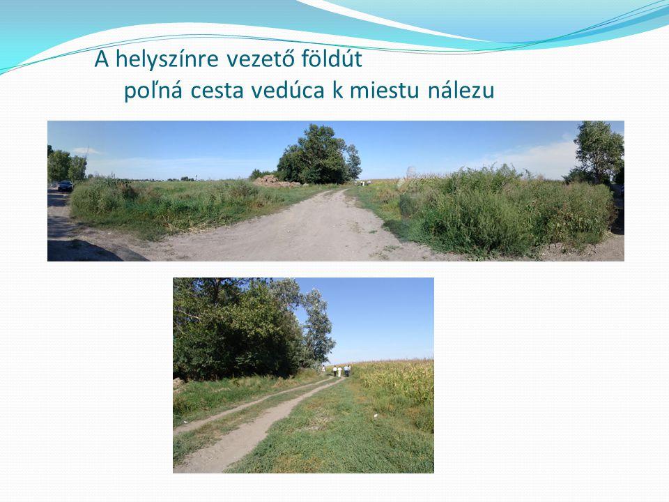 Helyszíni szemle / ohliadka miesta nálezu: Rögzített nyomok / zaistené stopy : - földútról keréknyom töredék.