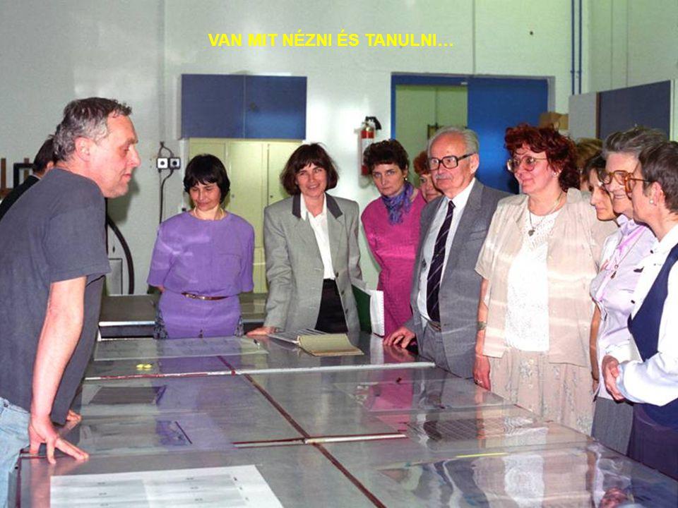 ARCOK - 1996 JOHN OFF (DÁNIA) KALLÓS PÉTER