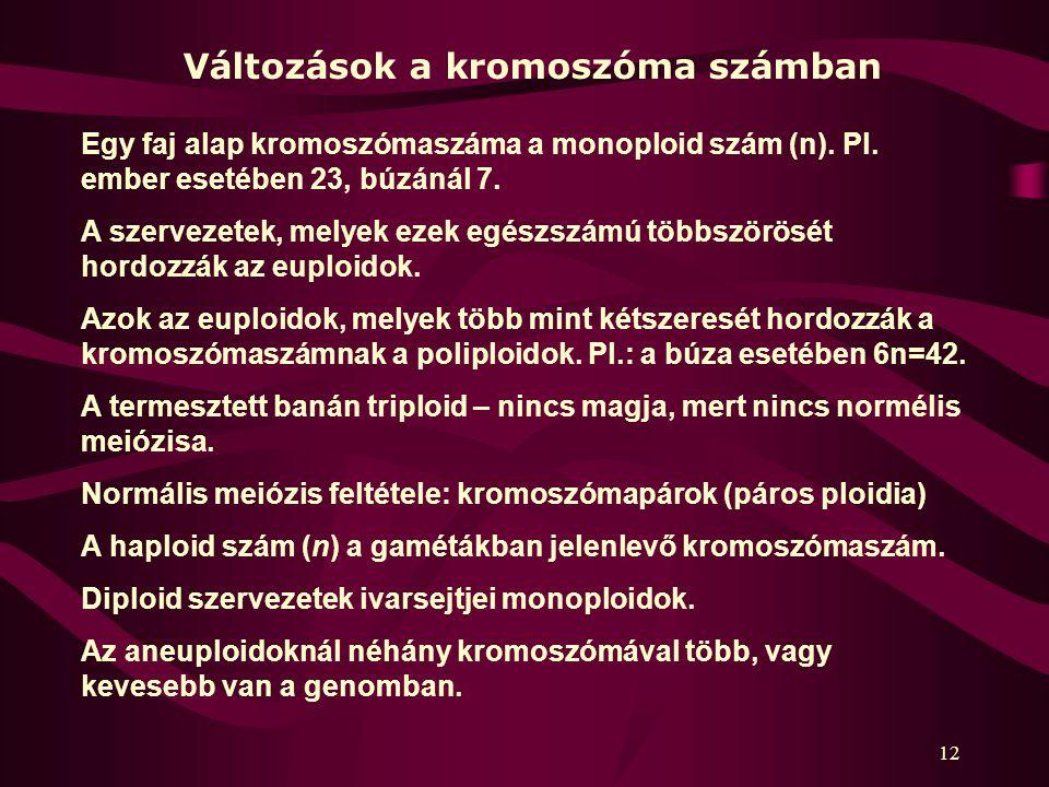 12 Egy faj alap kromoszómaszáma a monoploid szám (n).