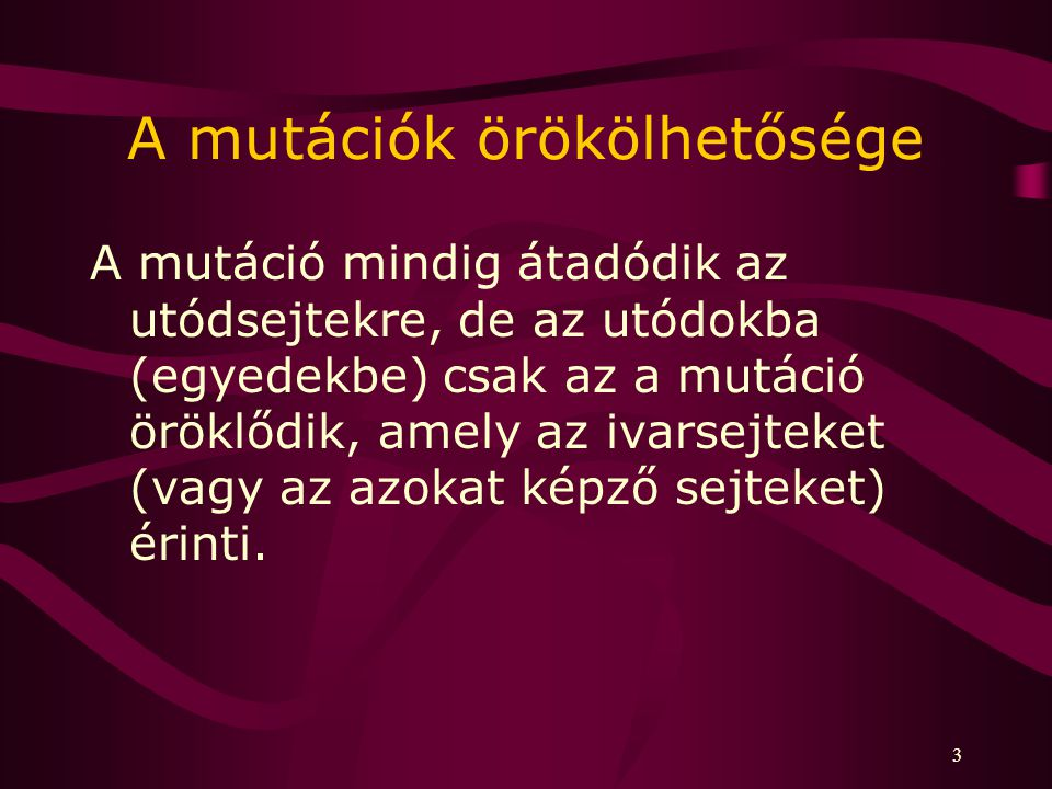 3 A mutációk örökölhetősége A mutáció mindig átadódik az utódsejtekre, de az utódokba (egyedekbe) csak az a mutáció öröklődik, amely az ivarsejteket (vagy az azokat képző sejteket) érinti.
