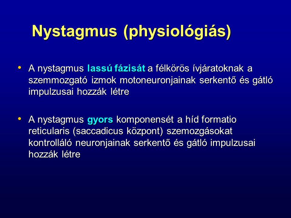 Nystagmus (physiológiás) A nystagmus lassú fázisát a félkörös ívjáratoknak a szemmozgató izmok motoneuronjainak serkentő és gátló impulzusai hozzák lé