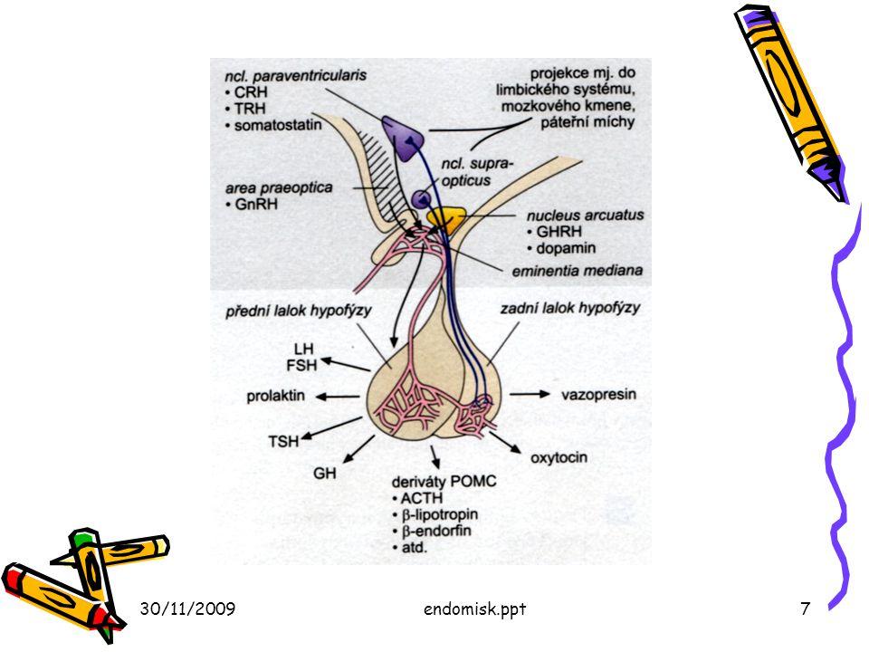 30/11/2009endomisk.ppt8 Hypothalamus és a hypophysis hátsó lebenye Liberinek (peptidek), a hypophysis első lebenyének működését irányítják Dopamín (prolaktin blokkoló) Vazopresszin (antidiuretikus hormon (ADH, AVP) és Oxytocin (méhösszehúzódás) –két ciklikus peptid