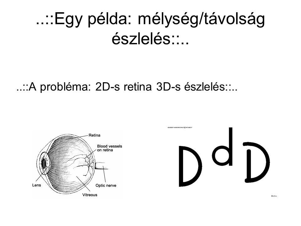 ..::Egy példa: mélység/távolság észlelés::....::A probléma: 2D-s retina 3D-s észlelés::..