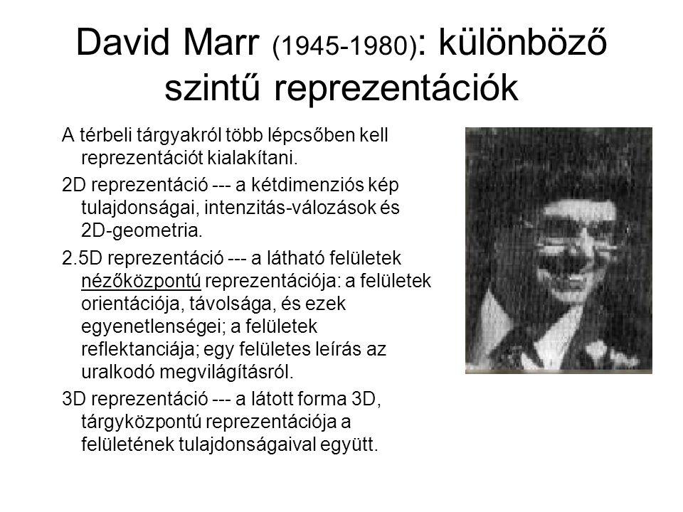 David Marr (1945-1980) : különböző szintű reprezentációk A térbeli tárgyakról több lépcsőben kell reprezentációt kialakítani. 2D reprezentáció --- a k