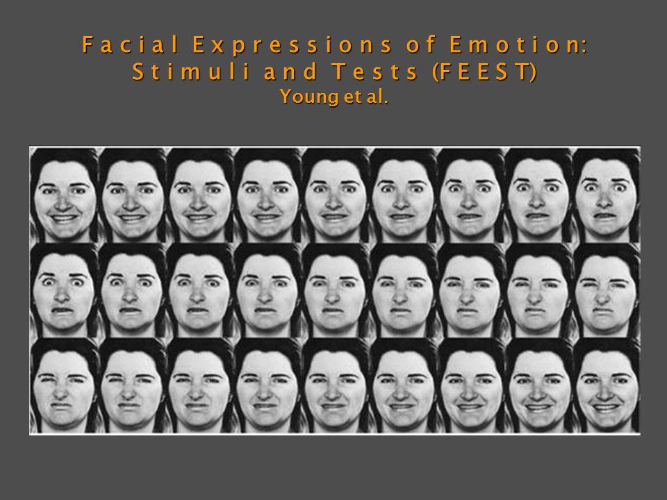 F a c i a l E x p r e s s i o n s o f E m o t i o n: S t i m u l i a n d T e s t s (F E E S T) Young et al.