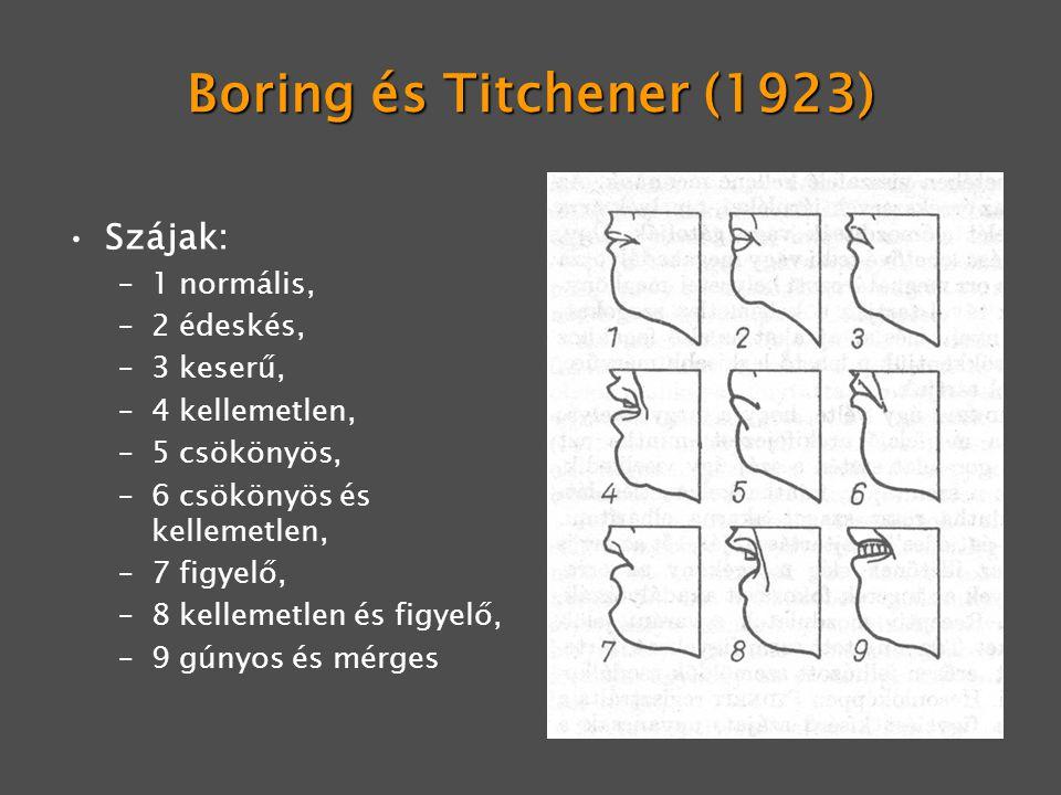 Boring és Titchener (1923) Szájak: –1 normális, –2 édeskés, –3 keserű, –4 kellemetlen, –5 csökönyös, –6 csökönyös és kellemetlen, –7 figyelő, –8 kelle