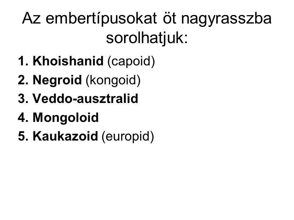 Az embertípusokat öt nagyrasszba sorolhatjuk: 1.Khoishanid (capoid) 2.Negroid (kongoid) 3.Veddo-ausztralid 4.Mongoloid 5.Kaukazoid (europid)