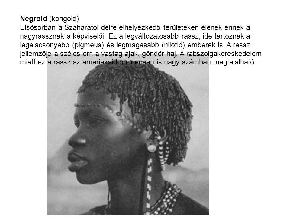 Negroid (kongoid) Elsősorban a Szaharától délre elhelyezkedő területeken élenek ennek a nagyrassznak a képviselői. Ez a legváltozatosabb rassz, ide ta