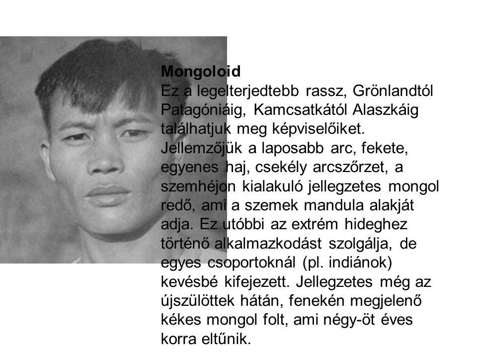 Mongoloid Ez a legelterjedtebb rassz, Grönlandtól Patagóniáig, Kamcsatkától Alaszkáig találhatjuk meg képviselőiket. Jellemzőjük a laposabb arc, feket