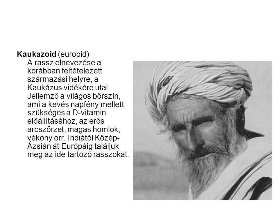 Kaukazoid (europid) A rassz elnevezése a korábban feltételezett származási helyre, a Kaukázus vidékére utal. Jellemző a világos bőrszín, ami a kevés n