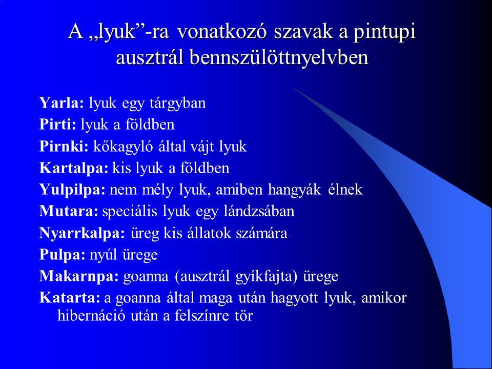 """A """"lyuk -ra vonatkozó szavak a pintupi ausztrál bennszülöttnyelvben Yarla: lyuk egy tárgyban Pirti: lyuk a földben Pirnki: kőkagyló által vájt lyuk Kartalpa: kis lyuk a földben Yulpilpa: nem mély lyuk, amiben hangyák élnek Mutara: speciális lyuk egy lándzsában Nyarrkalpa: üreg kis állatok számára Pulpa: nyúl ürege Makarnpa: goanna (ausztrál gyíkfajta) ürege Katarta: a goanna által maga után hagyott lyuk, amikor hibernáció után a felszínre tör"""
