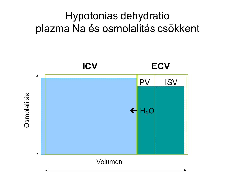 Hypotonias dehydratio plazma Na és osmolalitás csökkent ICVECV PVISV Osmolalitás Volumen  H 2 O
