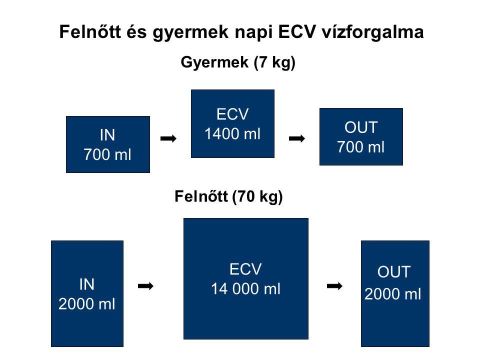 Felnőtt és gyermek napi ECV vízforgalma Gyermek (7 kg) ECV 1400 ml IN 700 ml OUT 700 ml Felnőtt (70 kg) ECV 14 000 ml IN 2000 ml OUT