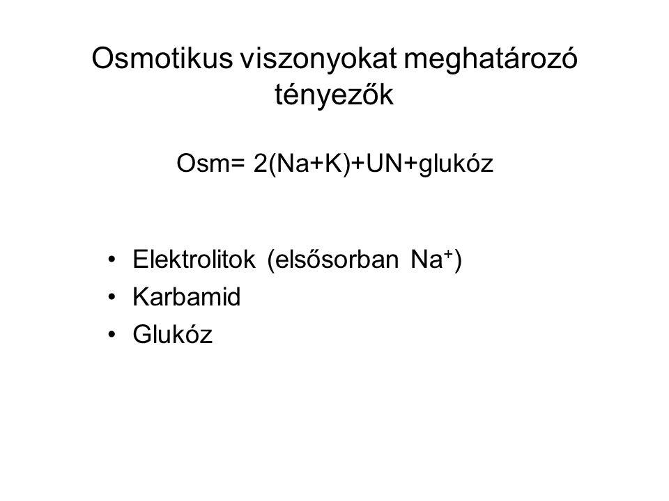 Osmotikus viszonyokat meghatározó tényezők Osm= 2(Na+K)+UN+glukóz Elektrolitok (elsősorban Na + ) Karbamid Glukóz