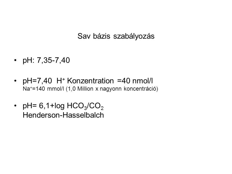 Sav bázis szabályozás pH: 7,35-7,40 pH=7,40 H + Konzentration =40 nmol/l Na + =140 mmol/l (1,0 Million x nagyonn koncentráció) pH= 6,1+log HCO 3 /CO 2