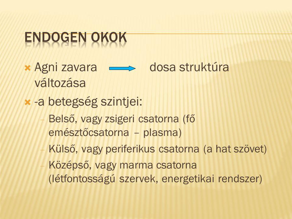 Agni zavara dosa struktúra változása  -a betegség szintjei:  Belső, vagy zsigeri csatorna (fő emésztőcsatorna – plasma)  Külső, vagy periferikus
