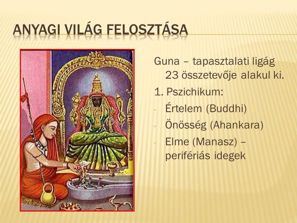 Guna – tapasztalati ligág 23 összetevője alakul ki. 1. Pszichikum: - Értelem (Buddhi) - Önösség (Ahankara) - Elme (Manasz) – perifériás idegek