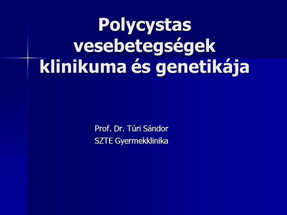 Polycystas vesebetegségek klinikuma és genetikája Prof. Dr. Túri Sándor SZTE Gyermekklinika