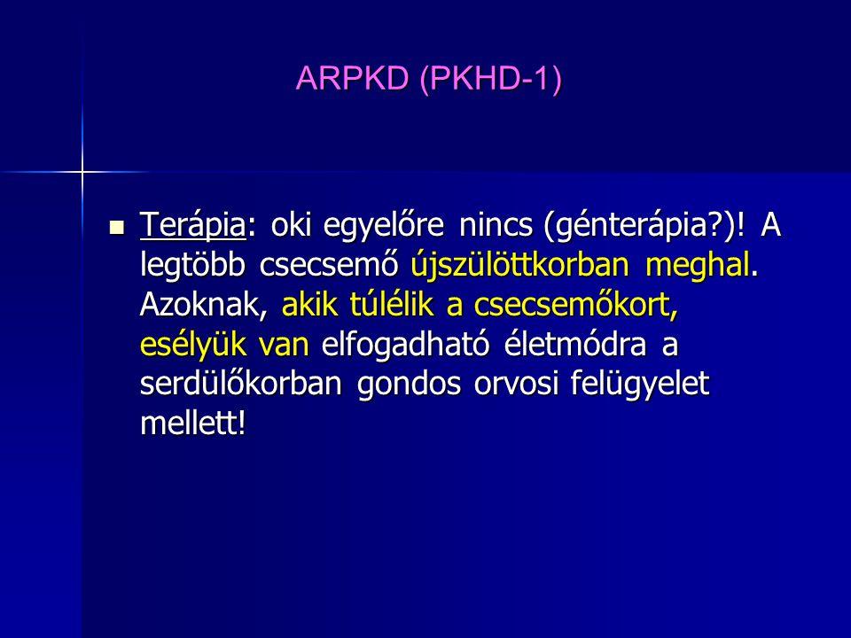ARPKD (PKHD-1) Terápia: oki egyelőre nincs (génterápia?)! A legtöbb csecsemő újszülöttkorban meghal. Azoknak, akik túlélik a csecsemőkort, esélyük van