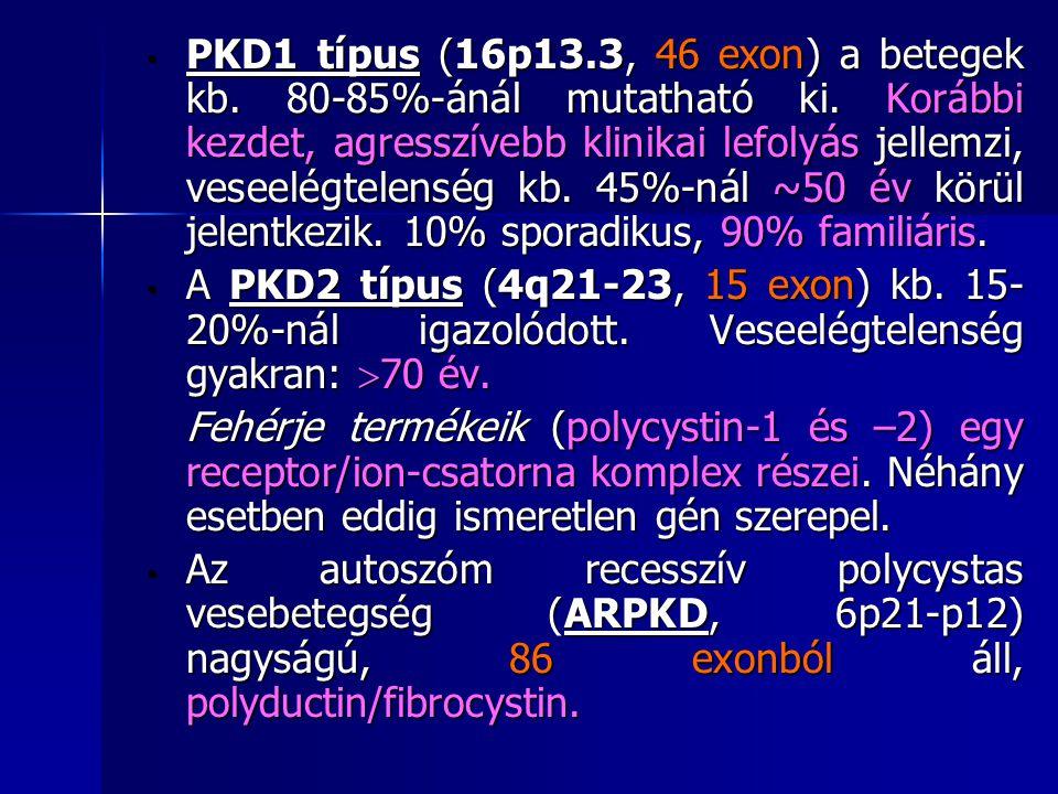 PKD1 típus (16p13.3, 46 exon) a betegek kb. 80-85%-ánál mutatható ki. Korábbi kezdet, agresszívebb klinikai lefolyás jellemzi, veseelégtelenség kb. 45