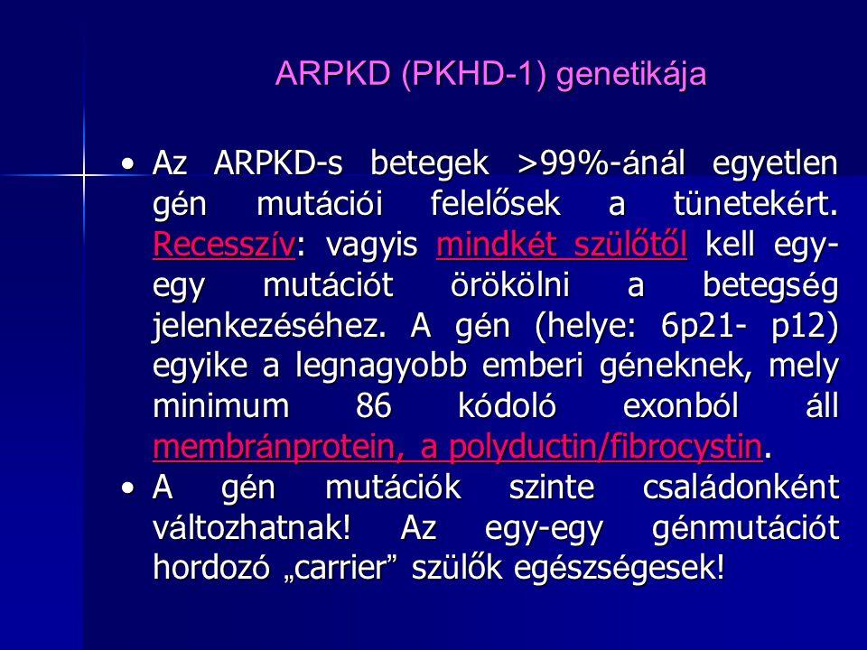 ARPKD (PKHD-1) genetikája Az ARPKD-s betegek >99%- á n á l egyetlen g é n mut á ci ó i felelősek a t ü netek é rt. Recessz í v: vagyis mindk é t sz ü