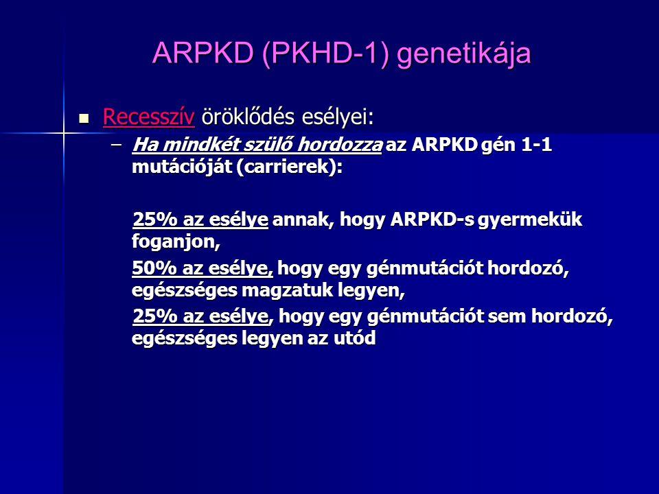 ARPKD (PKHD-1) genetikája Recesszív öröklődés esélyei: Recesszív öröklődés esélyei: –Ha mindkét szülő hordozza az ARPKD gén 1-1 mutációját (carrierek)