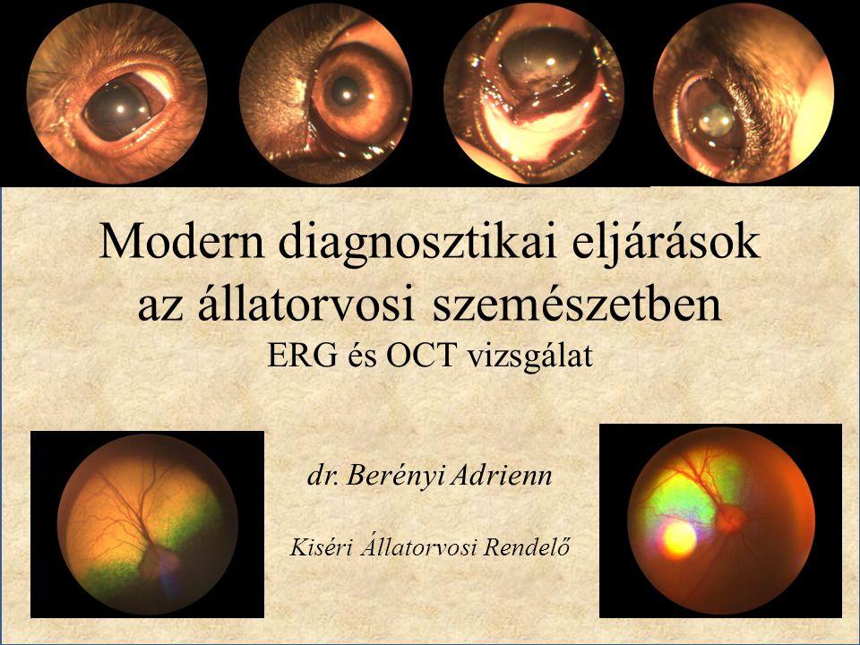 Modern diagnosztikai eljárások az állatorvosi szemészetben ERG és OCT vizsgálat dr. Berényi Adrienn Kiséri Állatorvosi Rendelő