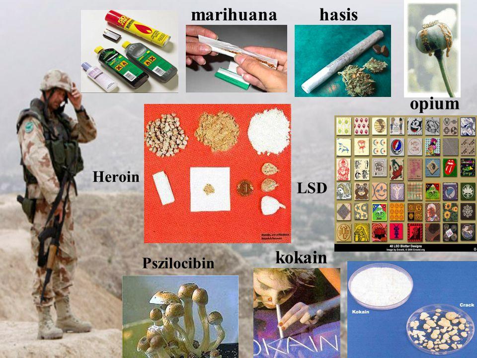 hasismarihuana opium kokain Pszilocibin LSD Heroin