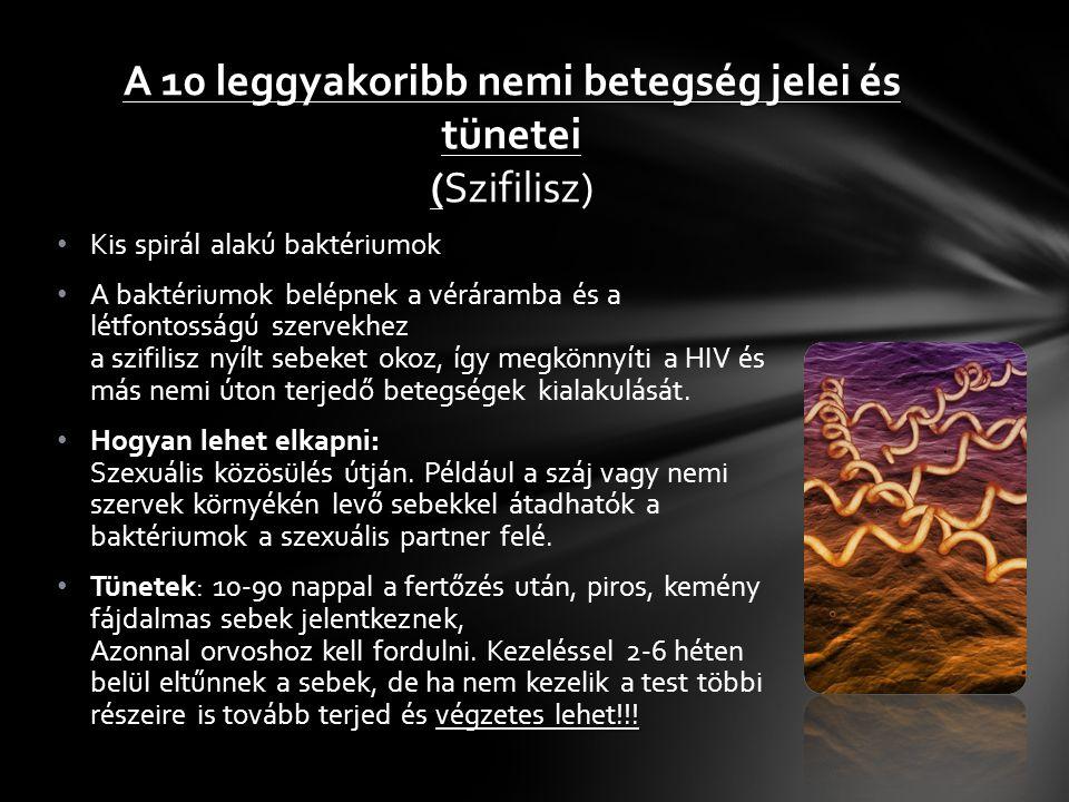 Bakteriális fertőzés a húgyutakban és nemi szerveken.