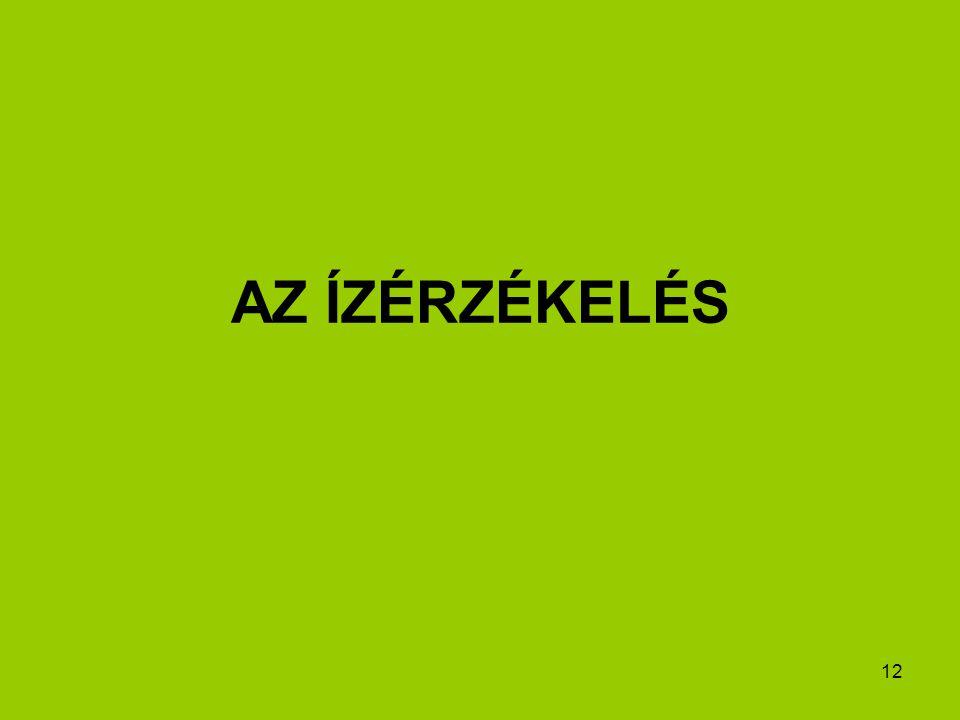 12 AZ ÍZÉRZÉKELÉS