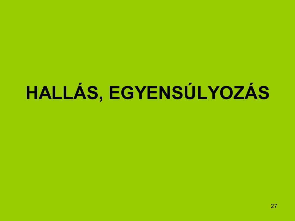 27 HALLÁS, EGYENSÚLYOZÁS