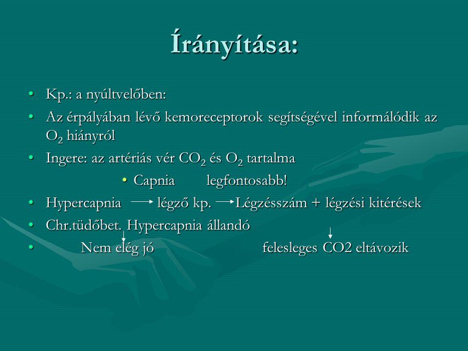 Számos tényező befolyásolja: A., Fizikai aktivitásnöveli a légzés számát és mélységétA., Fizikai aktivitásnöveli a légzés számát és mélységét (oxigéni