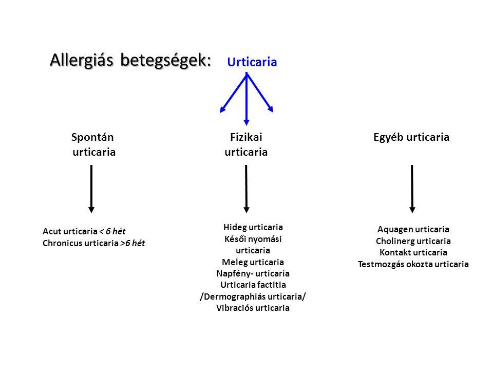 Urticaria Spontán urticaria Fizikai urticaria Egyéb urticaria Acut urticaria < 6 hét Chronicus urticaria >6 hét Hideg urticaria Késői nyomási urticari