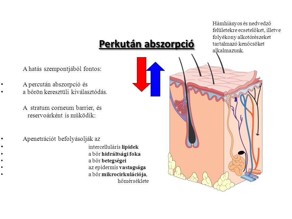 A hatás szempontjából fontos: A percután abszorpció és a bőrön keresztüli kiválasztódás. A stratum corneum barrier, és reservoárként is működik: Apene