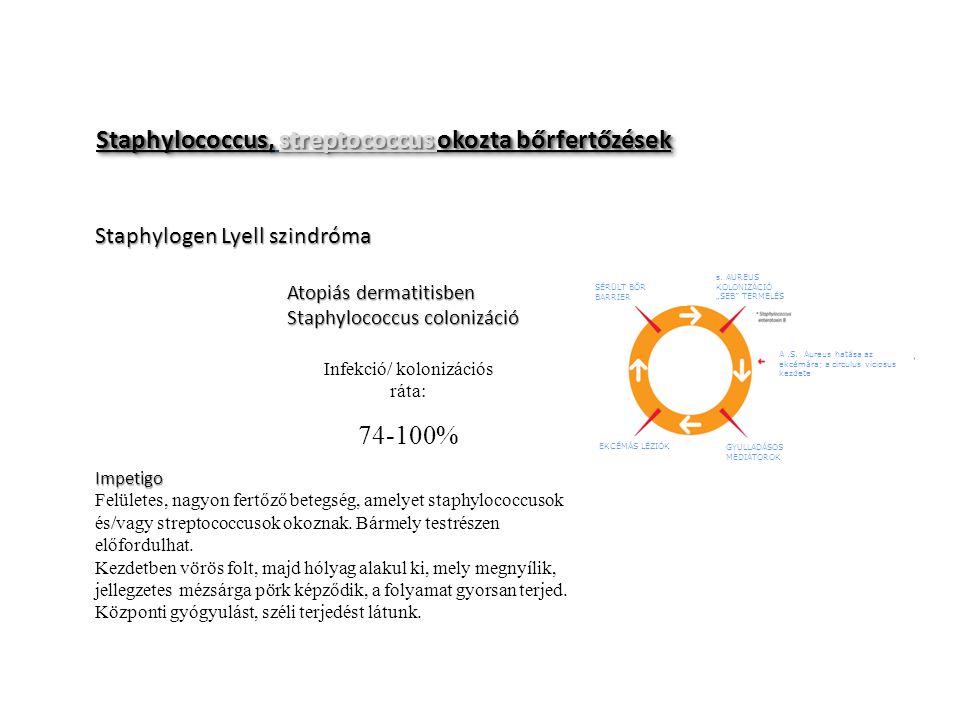 Staphylococcus, streptococcus okozta bőrfertőzések Staphylogen Lyell szindróma Atopiás dermatitisben Staphylococcus colonizáció Impetigo Felületes, na