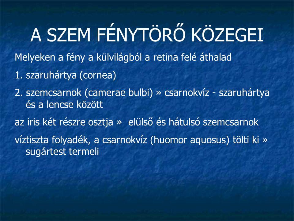A SZEM FÉNYTÖRŐ KÖZEGEI 3.