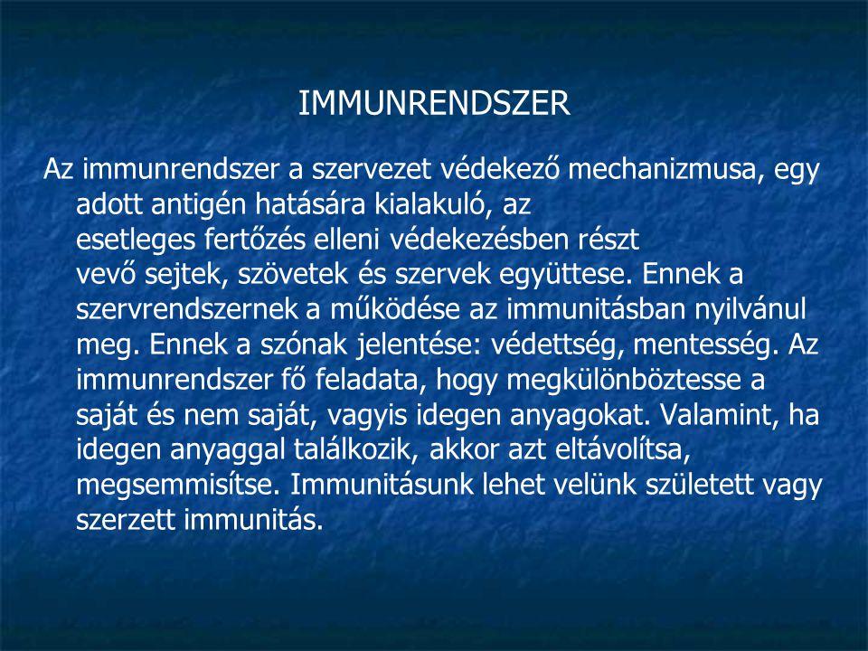 IMMUNRENDSZER Típusai: Veleszületett immunitás A velünk született védettség embrionális korban alakul ki.