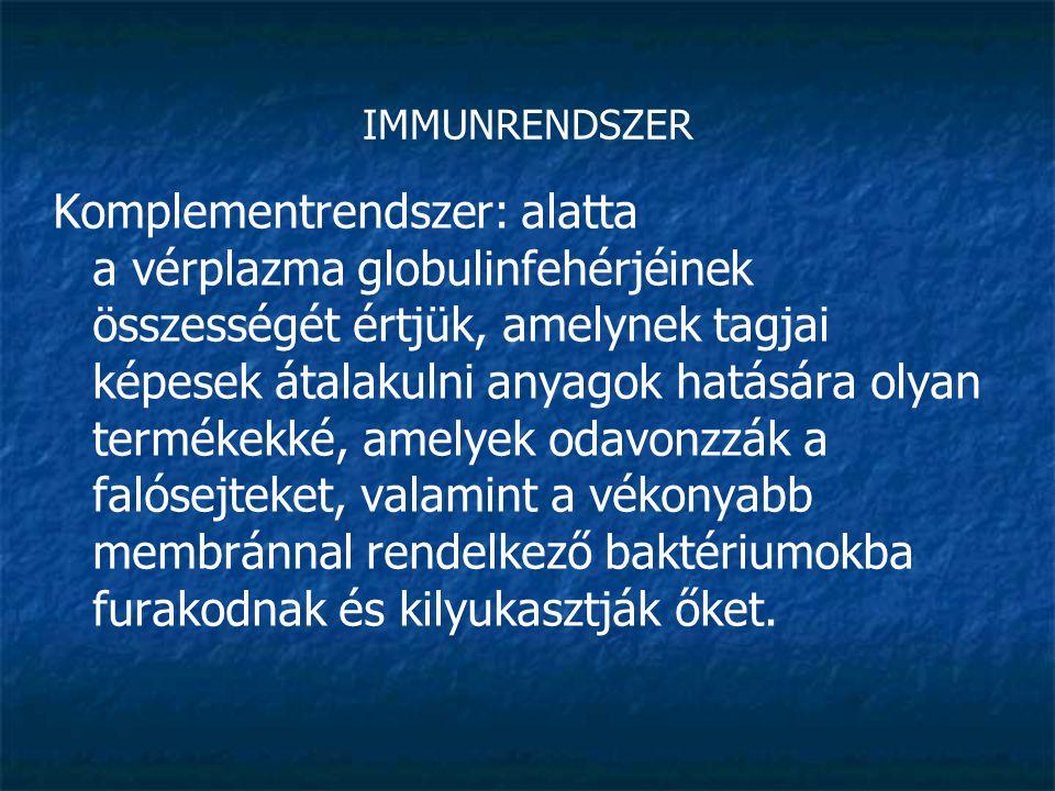 IMMUNRENDSZER Komplementrendszer: alatta a vérplazma globulinfehérjéinek összességét értjük, amelynek tagjai képesek átalakulni anyagok hatására olyan
