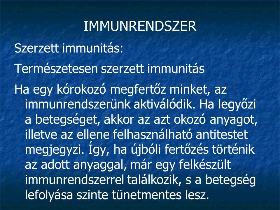 IMMUNRENDSZER Szerzett immunitás: Természetesen szerzett immunitás Ha egy kórokozó megfertőz minket, az immunrendszerünk aktiválódik. Ha legyőzi a bet