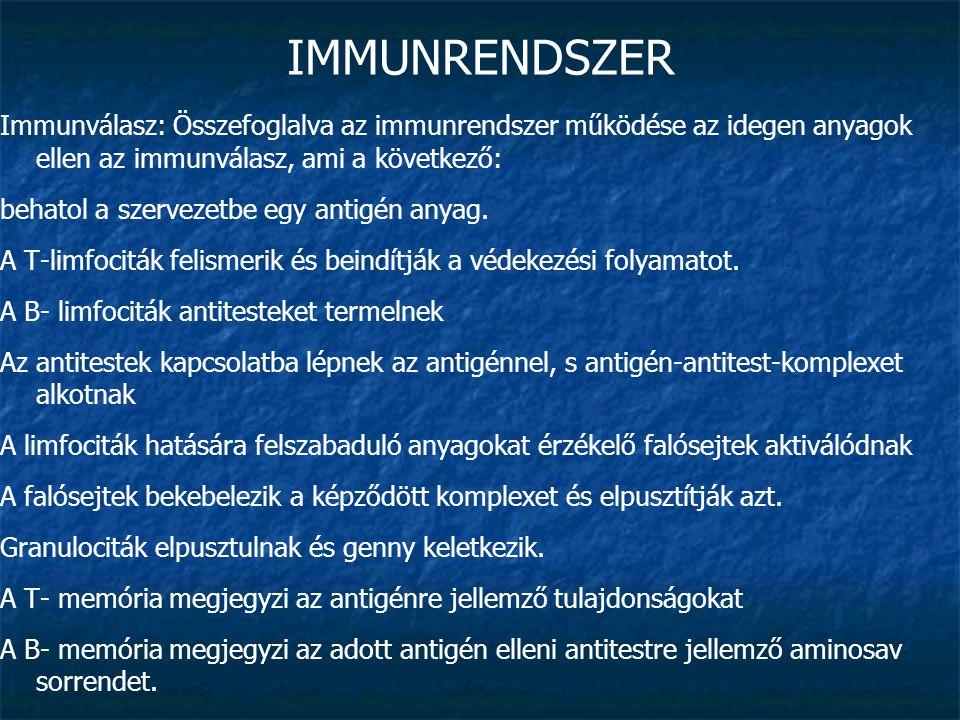 IMMUNRENDSZER Immunválasz: Összefoglalva az immunrendszer működése az idegen anyagok ellen az immunválasz, ami a következő: behatol a szervezetbe egy